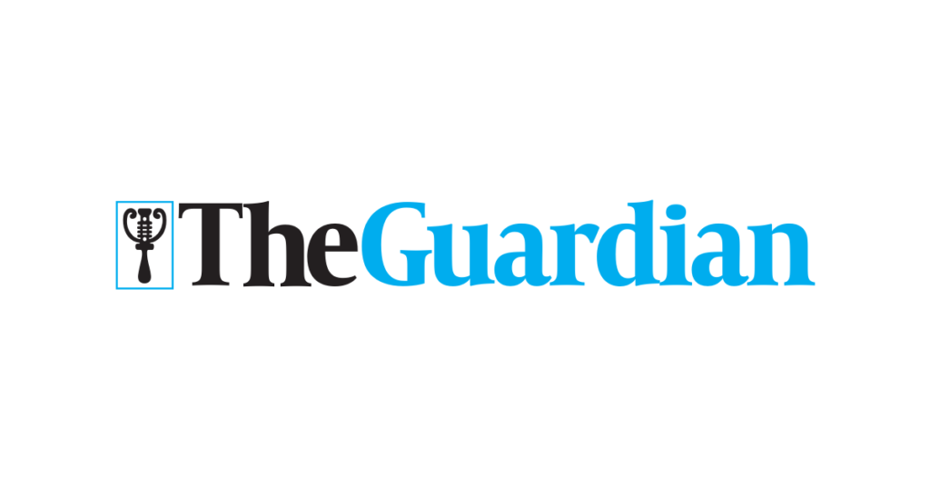 SME The Guardian